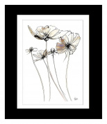 Steve Simpson Design Scribble Flower 1-Portrait Print with Matt Black Frame (78 x 108cm), Fine Art Paper, White, Creams/Lilac, 78 x 4 x 108 cm