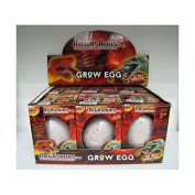 Childrens Large Magic Grow Your Own Dinosaur Egg for Boys & Girls Birthday & Xmas Hatch Your Own Growing Toy
