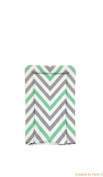 My Babiie Mint Green Chevron Changing Matby