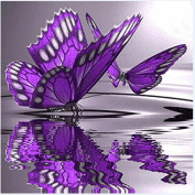 SO-buts Butterfly Flowers Diamond Embroidery 5D Diamond DIY Painting Cross Stitch Crafts