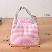 CUPWENH Cotton Insulation Package Bags, Portable Storage Box Anti Seaman Portable Cloth Bag,B