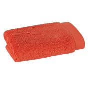 Scion Mr. Fox Solid Cotton Washcloth