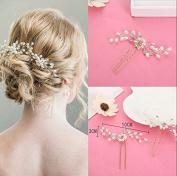 Slivercolor 2 PCS Elegant Ladies Pearls Rhinestone Hair Clip ,Wedding Bridal Jewellery Bridal Hair Jewellery,Rhinestone Hairpin Wedding Accessories