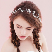 Women's Headpiece-Wedding Special Occasion Bride Hair Hoop Bride Bridesmaid Hair Belt Hand for Party /Prom/Banquet/Gift dress Accessories