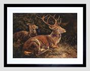 PAINTING ANIMAL GROUP PORTRAIT SCHLEICH RED DEER FRAMED ART PRINT B12X12766