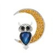 Drawihi Brooches Pin With White Diamon Owl Shape for Friends or Family