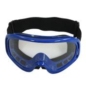 Outdoor Blue Frame Clear Lens Adjustable Strap Ski Protective Goggles