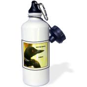 3dRose Minnesota State Bird The Loon, Sports Water Bottle, 620ml