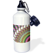 3dRose Abstract Disc Golf Putter - sports image features colourful frisbee disc golf puttter, Sports Water Bottle, 620ml
