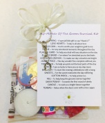 Step-Mother Of The Groom Survival Gift Kit Thank You Gift/Present Favour For Wedding Day