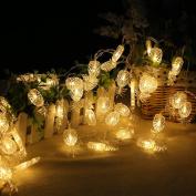 ALCYONEUS 2.2M 20 LED Cute Pineapple Shape String Fairy Light Christmas Home Garden Decor