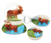 Puzzled Moose Resin Stone Collection Jewellery Box,Snow Globe and Magnet Bottle