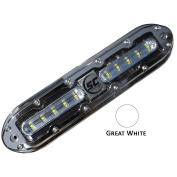 SHADOW-CASTER GREAT WHITE 10 LED UNDERWATER LIGHT W/6.1m