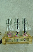 Set of 6 Glass Happy Hour Retro style Bottles with Flamingo and Floral Badges