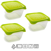 Set of 3 boxes square with lid Lime Green 1.3 Litres – BPA Free.