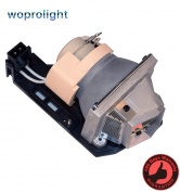 BL-FP230D BL-FP230J Replacement Lamp with Housing for OPTOMA Projectors