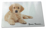 Golden Retriever 'Yours Forever' Extra Large Toughened Glass Cutting, Chopping B