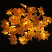 10 LED Maple Leaves Lights SOMESUN Window Curtain String Lamp House Party Decor