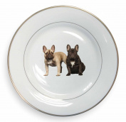 French Bulldog Gold Rim Plate in Gift Box Christmas Present