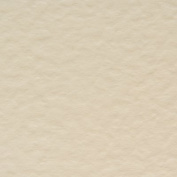 x50 A6 Ivory hammered/Hammer blank Paper Inserts