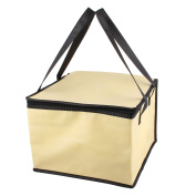 Outoor Beige Square Insulated Food Drink Fruit Warmer Cooler Carry Tote Ice Bag