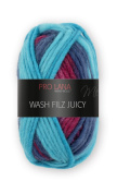 Wash and Filz Juicy 304 50 m 50 g