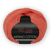 PRO Lana Merino Wool Cotton – Colour