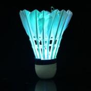 Souked Dark Night Colourful LED Lighting Sport Feather Birdies Badminton