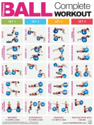 Fitness Ball Complete Workout - FT - Laminated Poster / Chart - Core - Chest - Legs - Shoulders & Back - Build Muscle, Tone & Tighten - Fitness Ball Training - 45.72cm X 60.96cm
