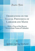 Observations on the Glacial Phenomena of Labrador and Maine
