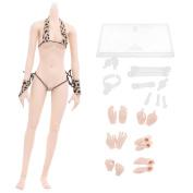 Sharplace 1/6th Scale Female Seamless Figure Pale Skin Body Fit 30cm Hot Toys Kumik CG