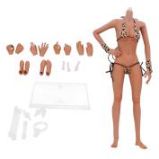 Sharplace 1/6th Scale Female Seamless Figure Wheat Skin Body Fit 30cm Hot Toys Kumik CG