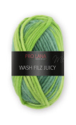 Wash and Filz Juicy 308 50 m 50 g