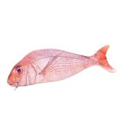 Doitsa Bag Office Supplies Creative Cartoon Animal Simulation Salted Fish Sea Fish Pen Bags Cosmetic Bag Students Stationery Bag