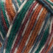 West Yorkshire Spinners Bluefaced Leicester Aran Country Birds 855 Pheasant