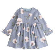HUHU833 Baby Dresses, Girl Princess Dress Party Pageant Formal Printing Flower Dresses