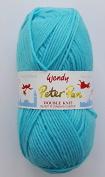 Peter Pan DOUBLE KNITTING DK Yarn/WoolG YARN - 50g 0937 Puddle