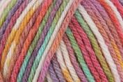 Sirdar SNUGGLY BABY CROFTER DK Knitting Wool/Yarn 50g - 173 Maypole