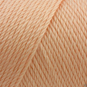 Caron Simply Soft Acrylic Aran Knitting Wool Yarn 170g -9737 Light Country Peach