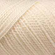 Caron Simply Soft Lights Acrylic DK Knitting Wool Yarn 85g -0002 Heavy Cream