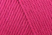 Caron Simply Soft Acrylic Aran Knitting Wool Yarn 170g -9764 Fuchsia