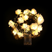 Wanshop String Light 20LED Rattan Rose Skewers String Light Night Fairy Light Lamp for Halloween Christmas, Party, BBQ, Wedding , Any Other Holiday Decorations Or DIY Gift