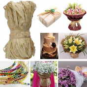 Edgeam Natural Raffia raffia Bundle Floral Decorations, 50g