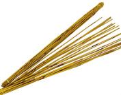 Steingaesser 01139 03 4800 Reed sticks, approx. 90 CM, waist A 60 Sun Yellow