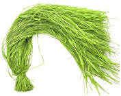 Steingaesser 01258 03 2200 Natural Raffia for Arts and Crafts, Approximately 500 g, Apple Green