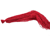 Steingaesser 01258 03 1100 Natural Raffia for Arts and Crafts Approximately 500 g Red