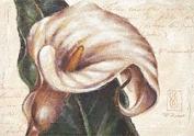 "Eurographics PRE1005 Art Print ""I Remember Calla"" by Paula Reed 70 x 100 cm"