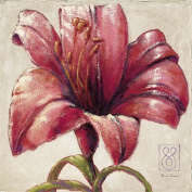 """Eurographics PRE1010 Art Print """"Red Lily Bloom"""" by Paula Reed 70 x 70 cm"""