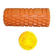 [PRIME DAY SALE] Trigger Point Foam Roller for Deep Tissue Muscle Massage. Helps with Myofascial Release + Pain Relief. Much Cheaper Than Sports Therapy. Great After Crossfit, Yoga, Pilates, Running, Gym & More! Free Massage Ball!