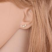 Zhichengbosi Fashion Small Stars earring Studs Button Earrings Jewellery Piercing Ear Ring